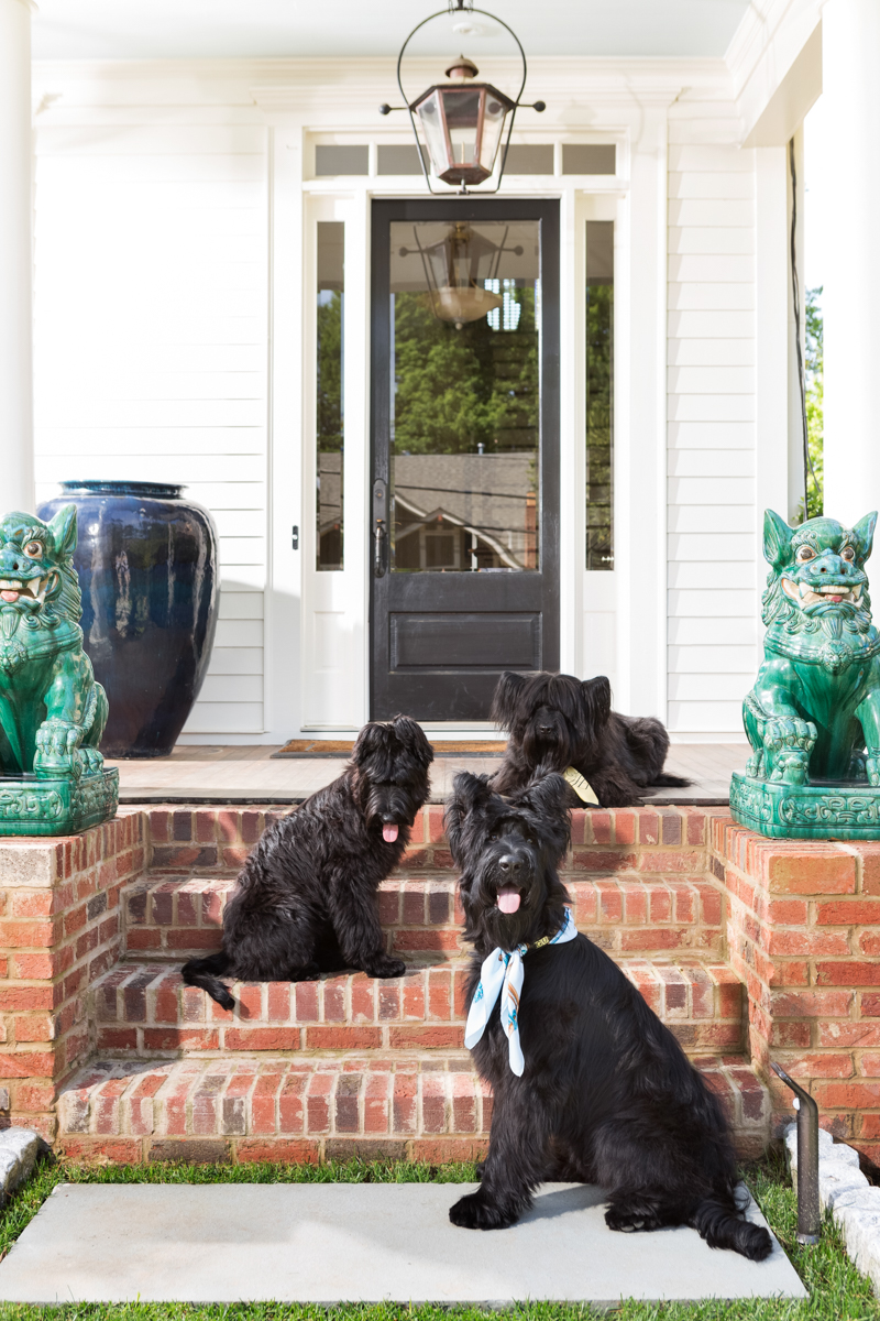 Three Dogs on a Porch